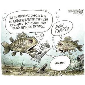 Le specie aliene dal punto di vista degli animali...