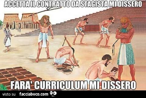q1h30muqhr-accetta-il-contratto-da-stagista-mi-dissero-fara-curriculum-mi-dissero_a