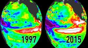 """La CO2 è IN costante aumento e nel 2015 ha registrato la più forte salita. Global Co2 levels have reached new levels fuelled by El Niño. El Niño is now ended, the climate change not"""" dice il WMO (World Metereological Organization) Ecco come è successo questo riscaldamento globale: un normale ciclone divenuto particolarmente caldo nel 2014-2015 che ha fatto sì che ci vorranno decine di anni per tornare indietro, perché più aumenta l'anidride carbonica, più aumenta la temperatura."""