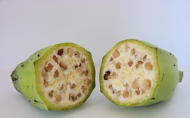 la prima banana coi semi