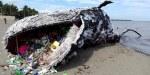 arte greenpeace balena morta di plastica filippine 2016