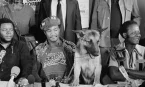 Foreman cane pastore tedesco