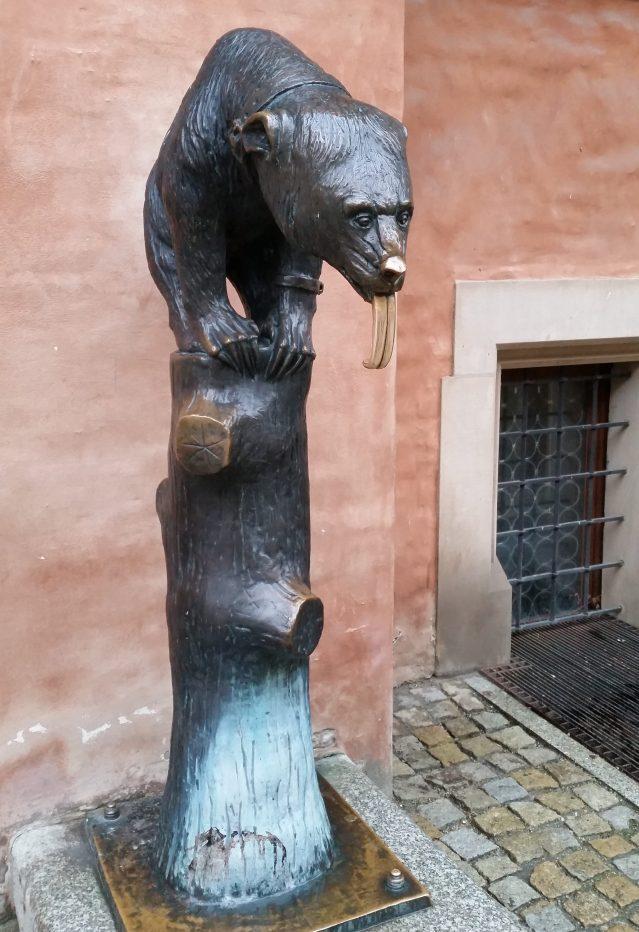 L'orso con la lingua portafortuna nella piazza del Mercato di Breslavia (febbraio 2016 credits StereoType Mag)